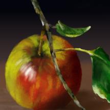 apple_002